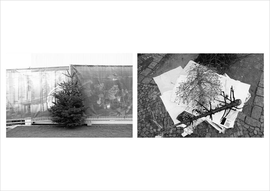 [cml_media_alt id='2349']O Tannenbaum | by Marco Ristuccia[/cml_media_alt]
