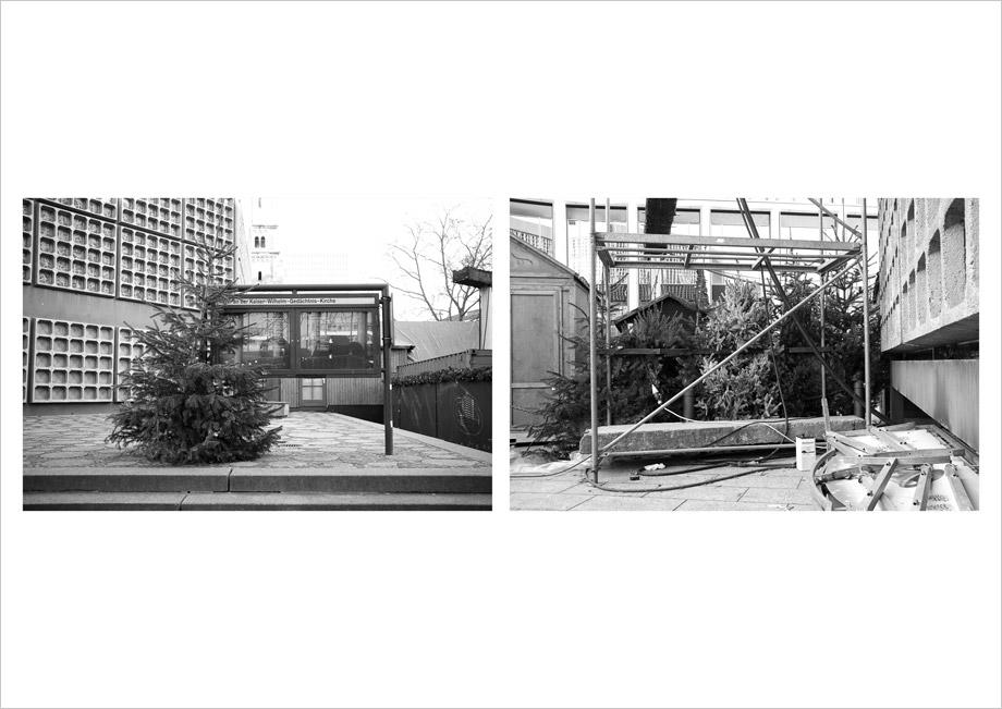 [cml_media_alt id='2354']O Tannenbaum | by Marco Ristuccia[/cml_media_alt]
